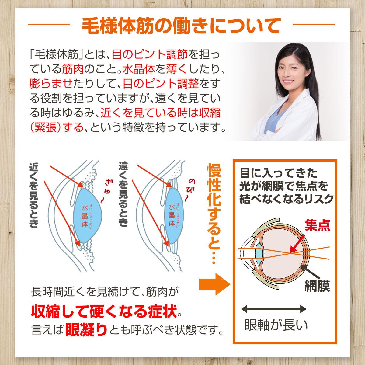 毛様体筋と近視の関係